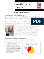 Falls Fact Sheet
