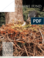 The Peregrine Fund Newsletter SUMMER-FALL 2002