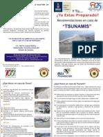 Diptico Tsunamis 2011