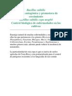 Bacillus Subtilis 3