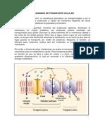 Mecanismos de Transporte Celular