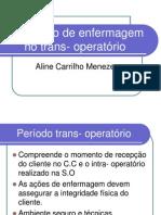 o Cuidado de Enfermagem No Trans Opera to Rio