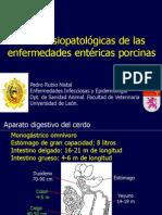 Bases fisiopatológicas de las enfermedades entéricas porcinas