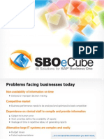 SBOeCube - Business Intelligence Reporting Tool for SAP B1