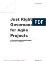 Just Right Governance