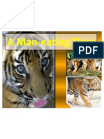 A Man-Eating Tiger
