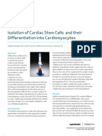 Isolation of Cardiac Stem Cells and their Differentiation into Cardiomyocytes