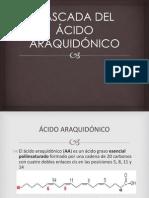 CASCADA DEL ÁCIDO ARAQUIDÓNICO