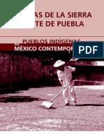Nahuas Sierra Norte Puebla