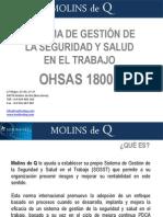 Certificacion e implantación OHSAS 18001 consultoria Molins de Q