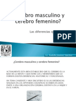 Cerebro Masculino y Cerebro Femenino