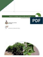 Paquete Tecnologico LIMON Colima
