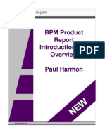 BPM Product Report Introduction and Overview (2010)