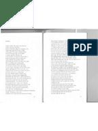 Tagetes patula descriptive essay Virginia Quarterly Review