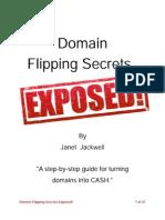 Domain Flipping Secrets eBook