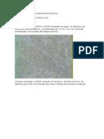 Transformaciones por tratamientos térmicos en Zircaloy y Zr Nb