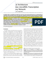 Global and Local Architecture of the Mammalian MicroRNA–Transcription Factor Regulatory Network