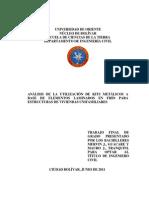 Tesis Con Formato MERVIN GUACARE 06-06-11