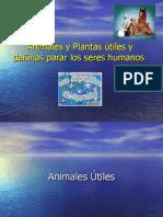 Animales y Plantas útiles y dañinas parar los