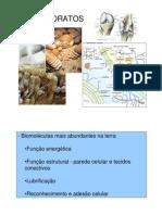 Carboidratos+-+biquimica