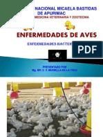 ENFERMEDADES AVES. 2011- II