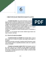 6 Circuite basculante