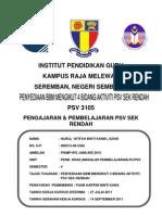 PSV 3105 full assignment
