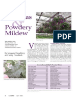 Verbenas & Powdery Mildew -GPN April 2006