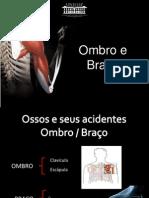 anatomia do ombro e braço