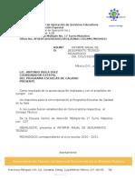 Informe Mat Tec Ped 2010-2011 - Copia