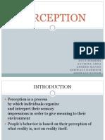 Perception Ppt