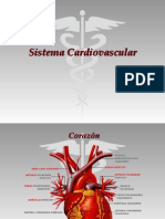 sistcardiovascular