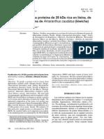 Purificacion de Una Proteina de 35kda Rica en Lisina Kiwicha
