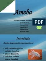 Slids Ameba