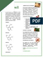 VITAMINA B6 O PIRIDOXINA NADINNE 11-2