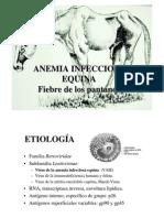 Anemia Infecciosa Equina-PDF