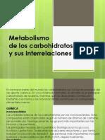 Unidad3 Carbohidratos Bioquimica Clinica