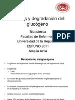 15 -Sintesis y Degradacion Del Glucogeno Clase 15