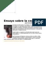 Ensayo Sobre La Ceguera (Galego)