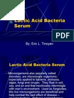 Lactic Acid Bacteria Serum