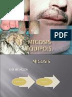 Expo Micosis