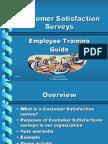 CustomerSatisfactionSurveys[1]