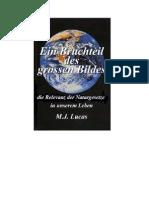 M.J.Lucas           Ein Bruchteil des Grossen Bildes,   Beschreibung,Auszuege,Deutsch
