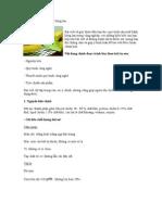 Quy trình sản xuất bánh bông lan