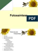 Fotossíntese final