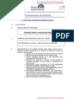 CHOLILA - versión final para el FINANCIAMIENTO DE PROYECTOS
