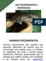 ACIDENTES COM ANIMAIS PEÇONHENTOS OK