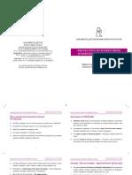 Unifem DV Presentation Booklet