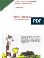 Piramides ecologicas