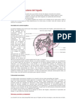 Trastornos Vasculares Del hígado